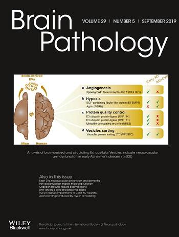 Brain pathology