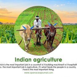 Indian Agriculture All information about Indian Agriculture