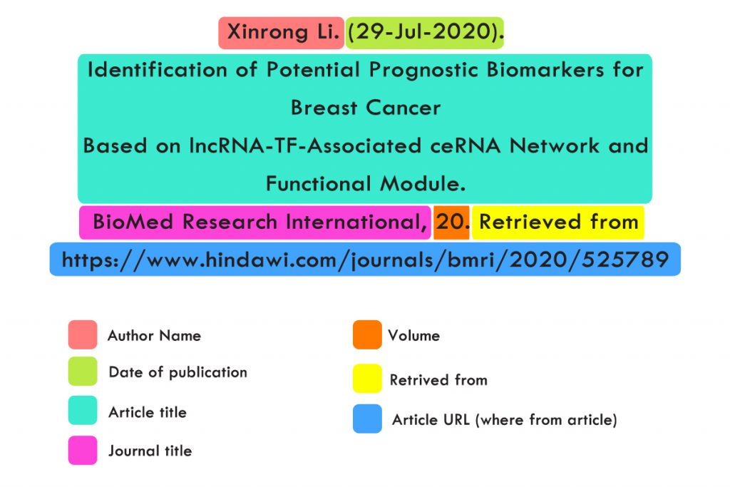 APA Citation Example with URL